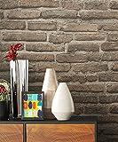 Steintapete Vlies Grau Beige Natur Stein | schöne edle Tapete im Steinmauer Design | moderne 3D Optik für Wohnzimmer, Schlafzimmer oder Küche inkl. Newroom Tapezier Profibroschüre mit super Tipps!