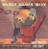 Picture Of The Guardian Presents Badly Drawn Boy