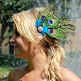 Chic Women Colorful Peacock Feather Crystal Rhinestone Hair Clip hairpin (A)
