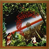 Agharta [Vinyl LP]