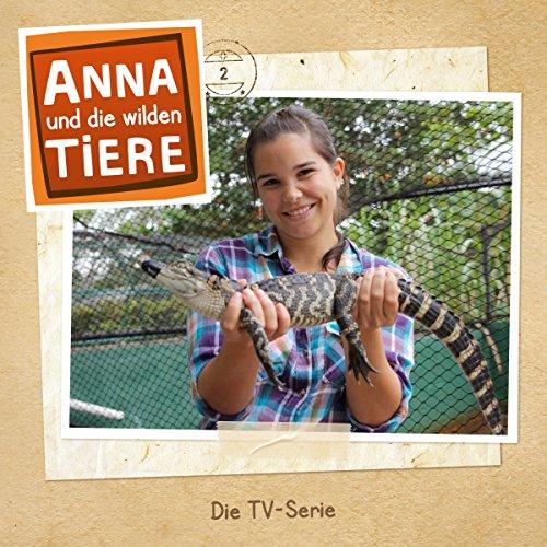 Die Zähne des Alligators & Wie pupst ein Delfin?: Anna und die wilden Tiere 2 (Die Ersten Wilden Tiere)