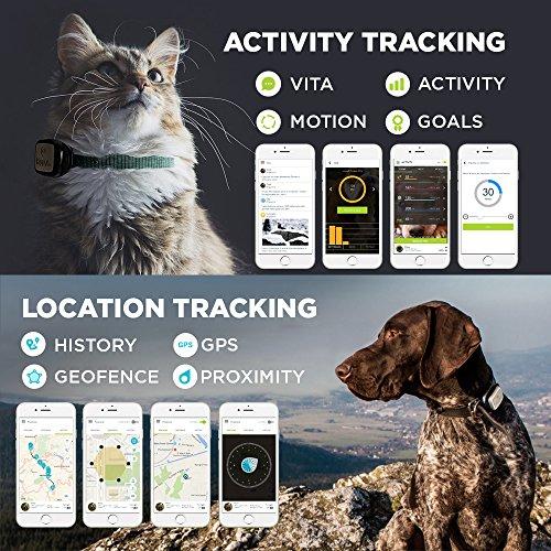 Kippy Vita kv0001bk GPS und Activity Tracker für Haustiere Abbildung 3