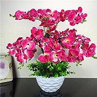 WRXXHZHR Künstliche Blumen Orchideen Kunststoff Topfpflanzen Set Home  Dekoration Rot 50 Cm X 45 Cm