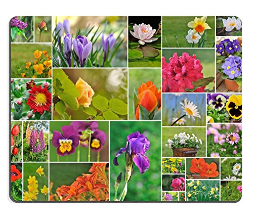 luxlady-gaming-mousepad-image-id-34486831-photo-collage-of-different-garden-flowers