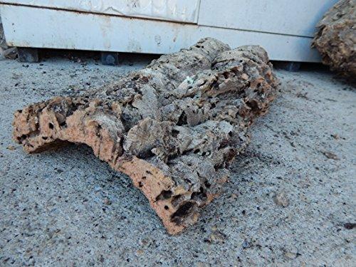 SAHAWA® Korkstück, Korkrinde ca, 50 x 20 cm , Korkplatte Terrariendeko -