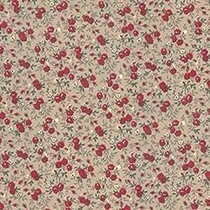 Tissu coton enduit, vendu au mètre/ Petites Fleurs - Beige Réf 021 - Avenue des Tissus