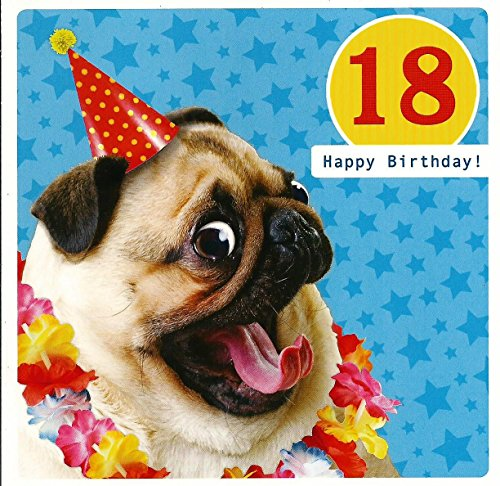 birthday-card-18-happy-birthday-18th-dog-wearing-a-party-hat