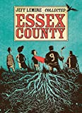 Essex County (English Edition) - Format Kindle - 9781603091190 - 10,33 €