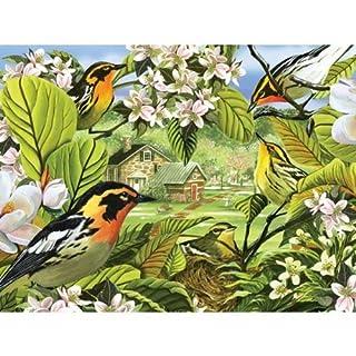 2PK Blackburnian Warblers Puzzle, 500 pieces