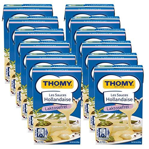 Thomy Les Sauces Hollandaise Laktosefrei, 12er Pack (12 x 250ml)