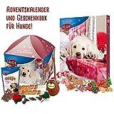 Adventskalender und Geschenkebox für den Hund