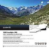 Garmin TOPO TransAlpin+ PRO Topografische Vektorkarte, schwarz, M