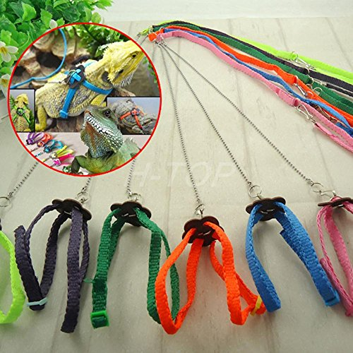 adjustable-pet-reptile-rettili-birds-lizard-harness-leashes-adjustable-multicolor-lead-light-soft-fa