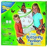 Insect Lore - Elevage de Papillons  - Modele pavillon