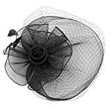 YWLINK Fascinators Mesh Hut Damen Cocktail Party Fascinator Haarreif Englische Tee Party Accessoires Tanzparty Party Retro Headwear FüR MäDchen Und Damen Federn Stirnband