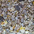 Robin & Blackbird wild Bird Food - 20KG Sack - FREE P & P INCLUDED (FOR UK only) by Hollybeck