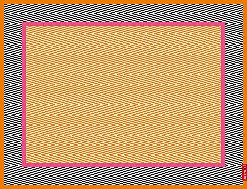 myspotti-by-s-827-buddy-paxton-vinilo-alfombra-del-piso-talla-s
