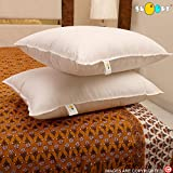 Snoopy Reliance Fibre Filled 2 Piece Pillow Set - 16' x 24', Antique White