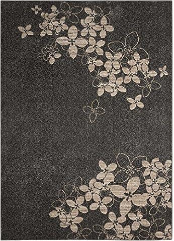 Nourison Teppich Mondrian 99446334978–Anthrazit Power bevorstand Teppich, anthrazit, 3ft 25,4cm x 5ft 25,4cm