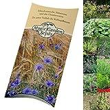 Saatgut Set: 'Kräutertee', 6 klassische Tee-Kräuter als Samen in schöner Geschenk-Verpackung