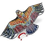 Großer Adler Drachen – Winddrachen, Flugdrachen & Kinderdrachen Zum Drachen Fliegen & Steigen – Perfekter Drachenflieger für Kinder und Erwachsene – Leichter und Stabiler Drachenflug