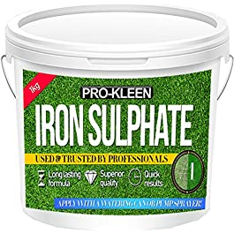 Sulfate de fer pour pelouse 1,5kg, après-shampooing–facilement soluble dans l'eau
