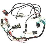Alftek CDI Wire Harness Assembly Wiring Set per 50CC, 125cc cinese ATV Electric Quad