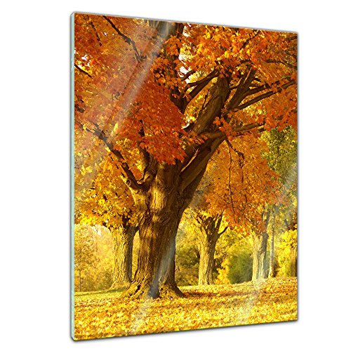 SALE - Herbst Szene - - 60 x 80 cm - Deko Glas - Wandbild aus Glas - Bild auf Glas - moderne Glasbilder - Glasfoto - Echtglas - kein Acryl - Handmade (Winter-szene)