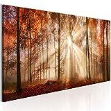 murando - Bilder Wald 150x50 cm - Leinwandbilder - Fertig Aufgespannt - Vlies Leinwand - 1 Teilig - Wandbilder XXL - Kunstdrucke - Wandbild - Waldlandschaft Natur Wald Panorama Baum c-B-0187-b-a