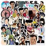 NEITWAY Calcomanías (100 pcs) Pegatinas de Vinilo, del Cantante de Pop Harry Styles, Diseño de Dibujos Animados Y Graffiti,pa