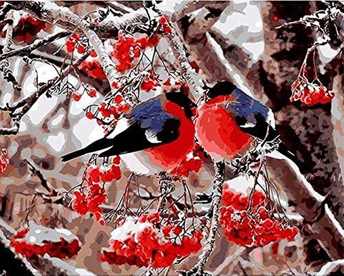 YEESAM ART Neuheiten Malen nach Zahlen Erwachsene Kinder, Rotbauch Vögel, Obst Baum, Winter Schnee 40x50 cm Leinen Segeltuch, DIY ölgemälde Weihnachten Geschenke