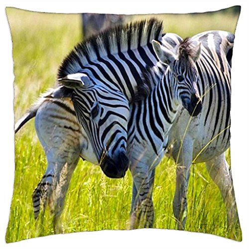 caress-throw-pillow-cover-case-18