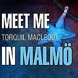 Meet Me in Malmo: Inspector Anita Sundstrom, Book 1