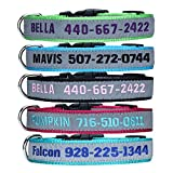 Personalised Dog Collar, Custom Dog Collar with Embroidered ID Pet Name & Phone Number, Breakaway REFLECTIVE Dog Collar with 4 Adjustable Sizes: XS, S, M, L