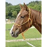 Shetland Absatzfohlen Araber Vollblut extra gro/ß Pony Fohlen Vollblut /Miniatur Zugpferd Natural-Horsemanship-Seilhalfter f/ür Parelli-Training in 11/Gr/ö/ßen/ Cob