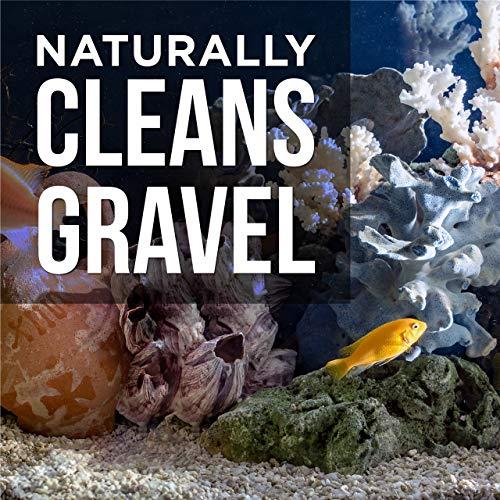 Zoom IMG-3 acquario gravel cleaner per pesce