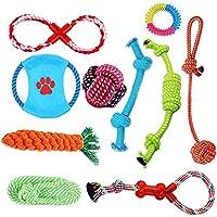 Hundespielzeug Set, ideal für kleine und mittelgroße Hunde, langlebig, sicher und Toxin-frei, Pet Kauen Seil Spielzeug, Hundeseil Spielzeug - Hundespielzeug (10 Artikel)