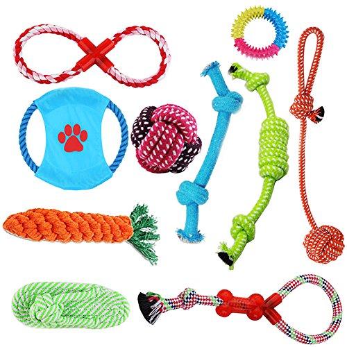 Hundespielzeug Set, ideal für kleine und mittelgroße Hunde, langlebig, sicher und Toxin-frei, Pet Kauen Seil Spielzeug, Hundeseil Spielzeug - Hundespielzeug (10 Artikel) (Spielzeug Kauen Hund)