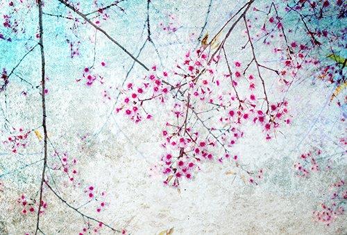 Printodecor - Alfombra Vinílica Impresa, Multicolor (Floral Spring Blossom), 143 x 97 cm