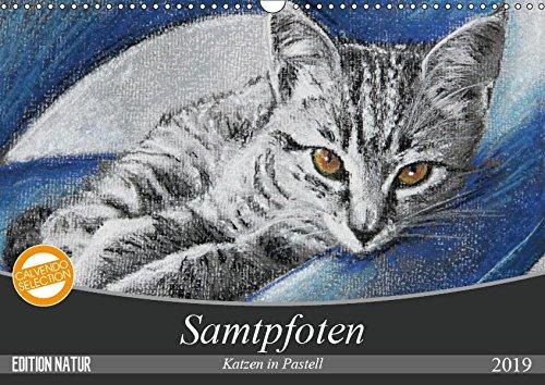 Samtpfoten - Katzen in Pastell (Wandkalender 2019 DIN A3 quer): Ein aufregender Tag im Leben der getigerten Kater Bob und Leo. (Monatskalender, 14 Seiten ) (CALVENDO Tiere) -