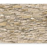 murando - Fototapete Steinoptik 400x280 cm - Vlies Tapete - Moderne Wanddeko - Design Tapete - Wandtapete - Wand Dekoration - Steintapete Steine Stein Mauer Steinoptik 3D f-B-0013-a-a