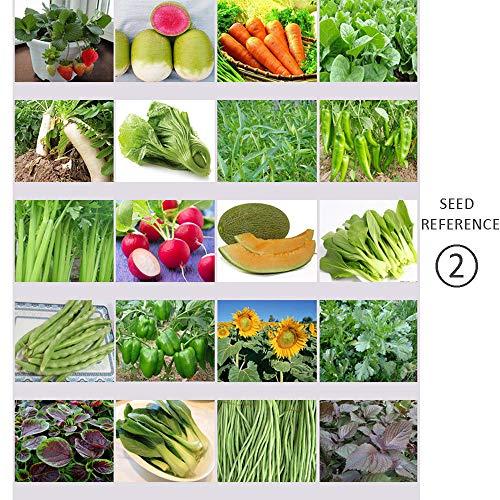Sconosciuto 40 Variety Pack di Verdure fresche di Frutta Semi di Sopravvivenza di Emergenza Garden Food