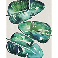 """Summer Thornton """"Banana Leaves"""" Canvas Print, Cotton, Multi-Colour, 3.20 x 40.00 x 50.00 cm"""