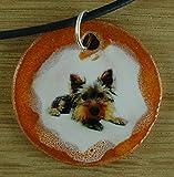 Die besten Freund Ketten Hunde - Echtes Kunsthandwerk: Schöner Keramik Anhänger mit einem Terrier Bewertungen