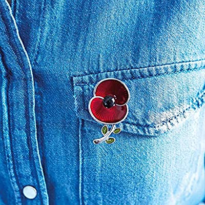 The Poppy Collection ® Enamel and Leaf Brooch Medium Silver