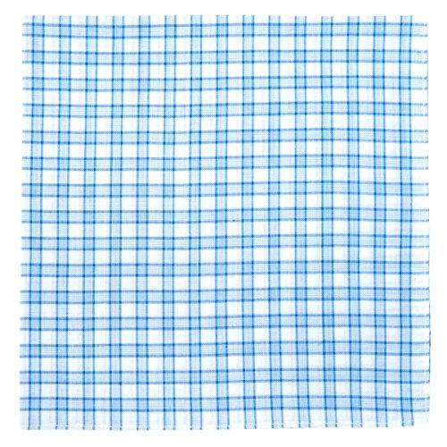 Retreez 6pièces pur coton Carreaux Hommes Accessoire de Hanky Carnet en forme de pochette/mouchoir Bleu - Light Blue Shepherd Check