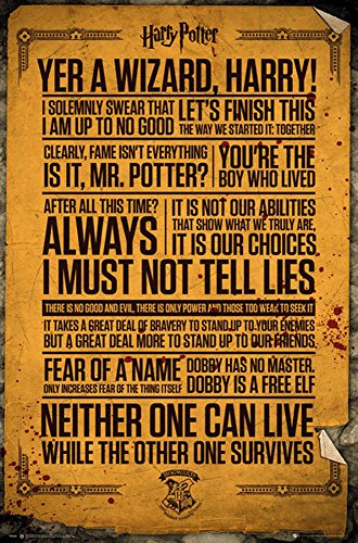 empireposter 747303 Harry Potter – Quotes – Póster de pelíc