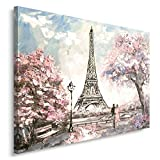 Feeby PARIS Bild auf Leinwand Größe: 70x50 cm, 1 Teilig Leinwanbild Wandbild Kunstdrucke Wanddeko EIFFEL TOWER FRANKREICH ARCHITEKTUR PINK