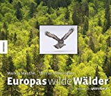 Europas wilde Wälder - Ein Buch von Greenpeace zur internationalen Kampage zum Schutz der Wälder