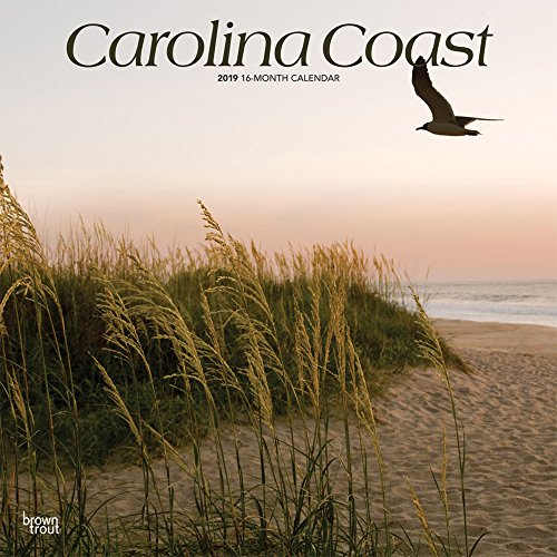 Carolina Coast 2019 Square